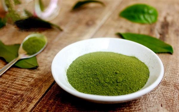 Bột trà xanh có tác dụng tốt trong việc trị mụn đầu đen