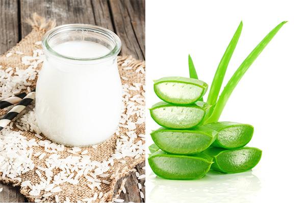 Dùng nha đam kết hợp nước vo gạo để điều trị mụn