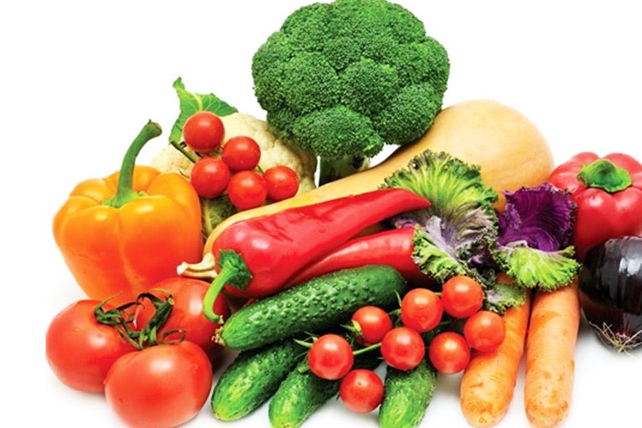 Dinh dưỡng và chế độ ăn uống